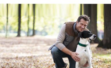Bewi Dog táplálék kiegészítők, avagy a vitaminok fontossága a kutya táplálásában